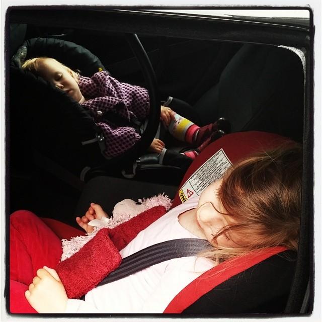 Nova en Lyse hebben een dagje in Nieuwkoop gespeeld. Bij de overdracht van de ene naar de andere auto blijken ze allebei helemaal uitgeteld in slaap gevallen te zijn. Schatjes..